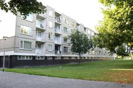 Langeplaat, Rozenburg