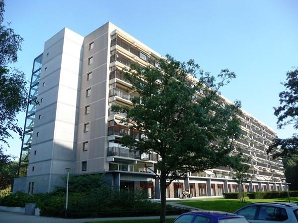 Rotterdam Einsteinplaats  1145  3614860