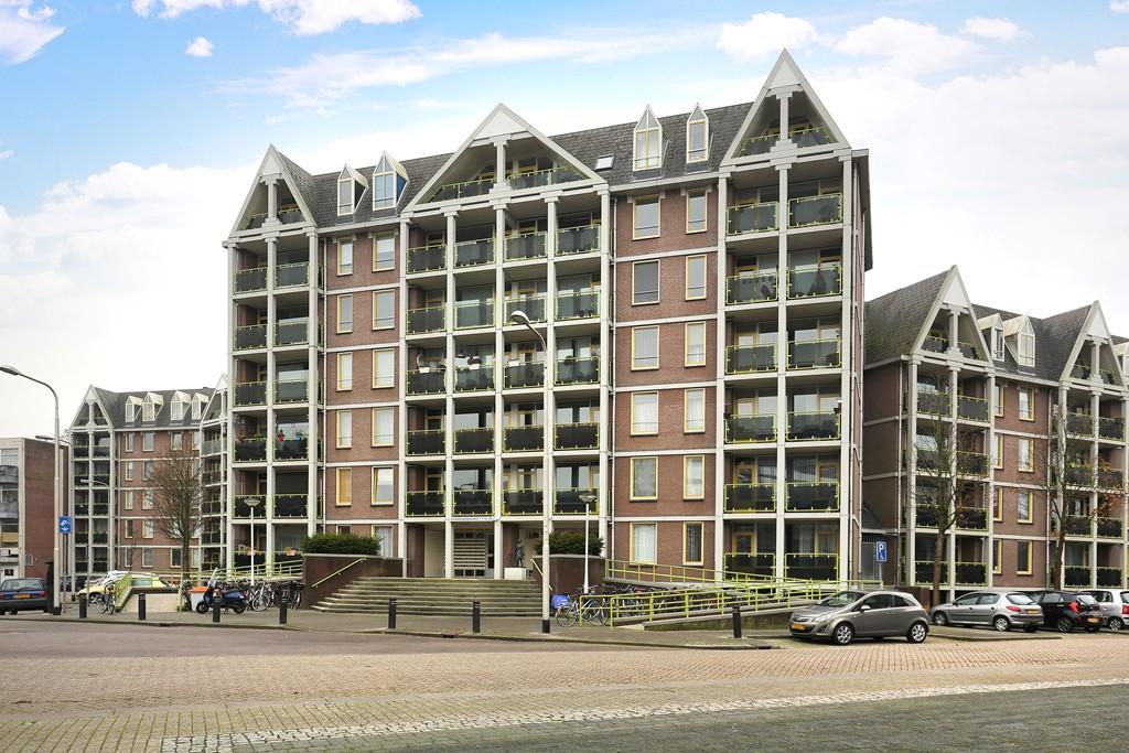 Anna Paulownahof, Tilburg