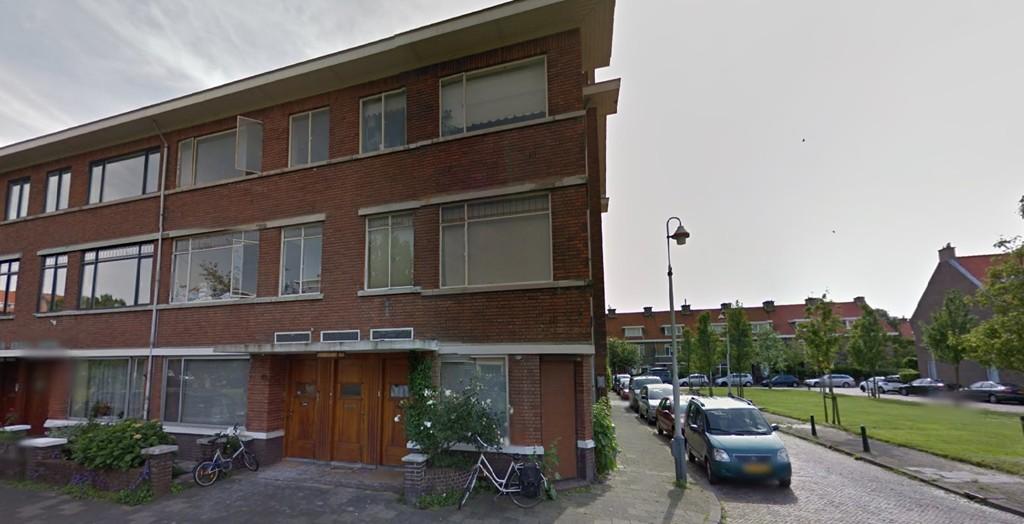 Hoefbladlaan, The Hague