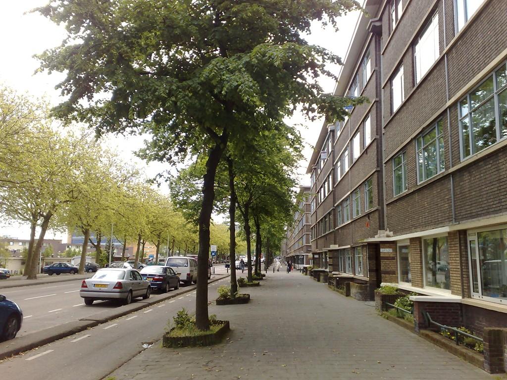 Troelstrakade, The Hague