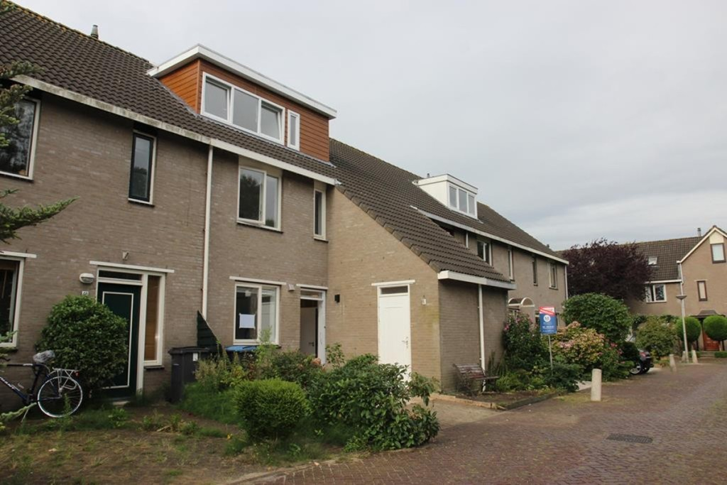 Chirurgijn, Amstelveen