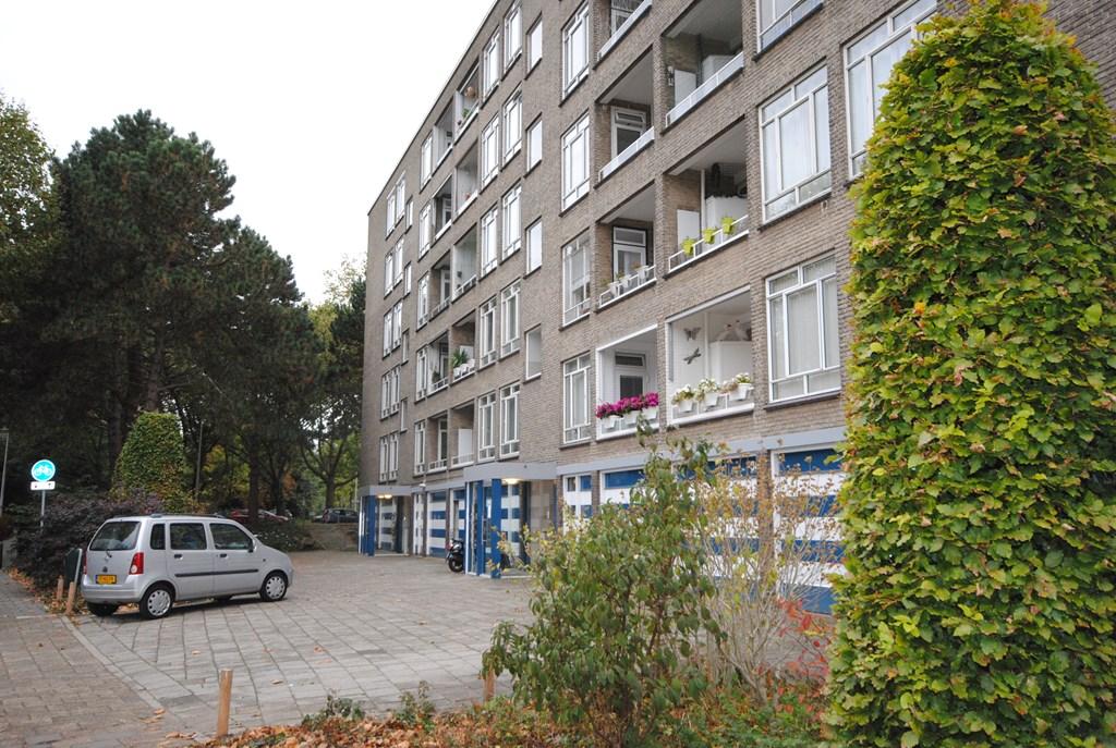 Barnsteenhorst