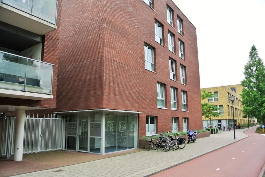 Diamantlaan, Leiden