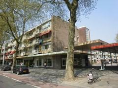 Goudestein, Rotterdam