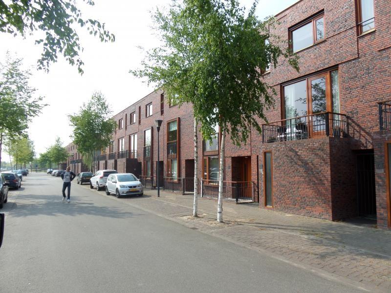 Grasveld, Eindhoven