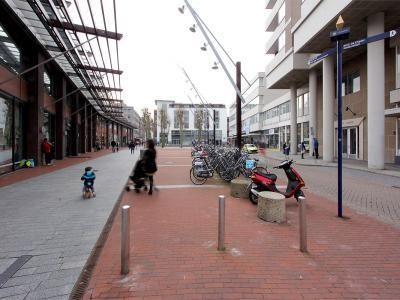 Burgemeester Loeffplein, 's-Hertogenbosch