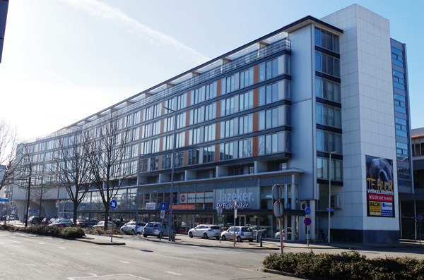 Rotterdam Grote Beer  95  3649159
