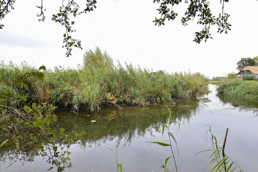 Maasdijk, Wijk en Aalburg