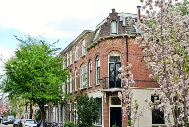 Havikstraat