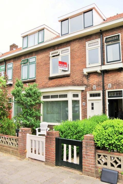 Coornhertstraat, Leiden