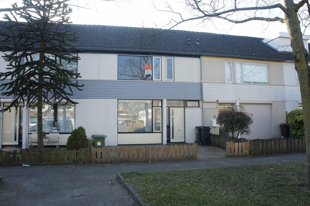 Zirkoon, 's-Hertogenbosch