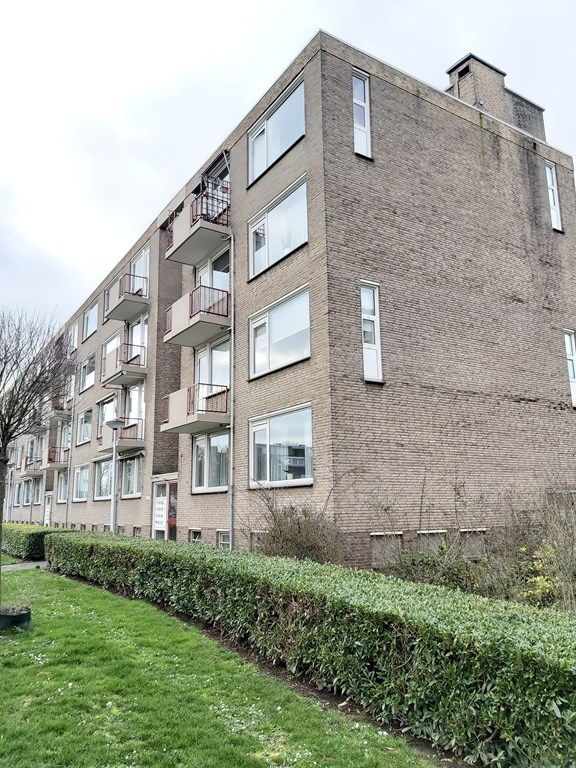 Tinnegietersdreef, Maastricht