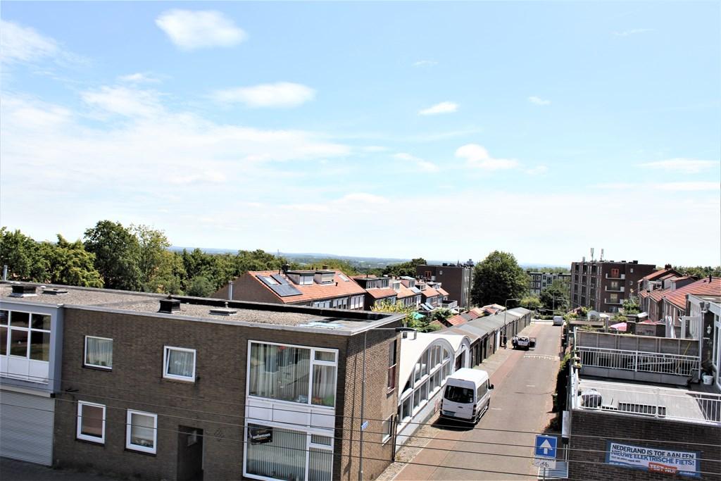 Roerdomplaan, Arnhem