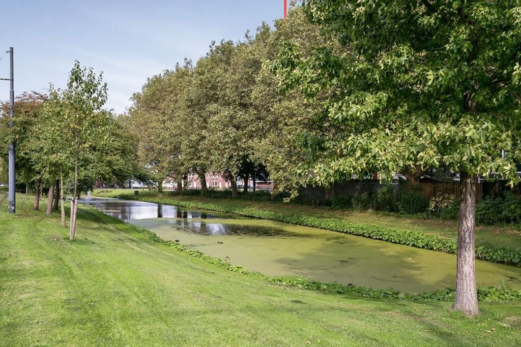 Louis Raemaekersstraat, Schiedam