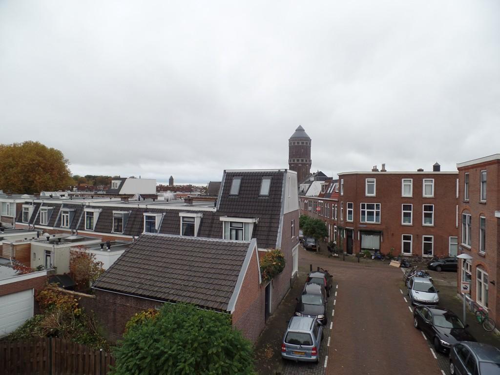 Chrysantstraat, Utrecht