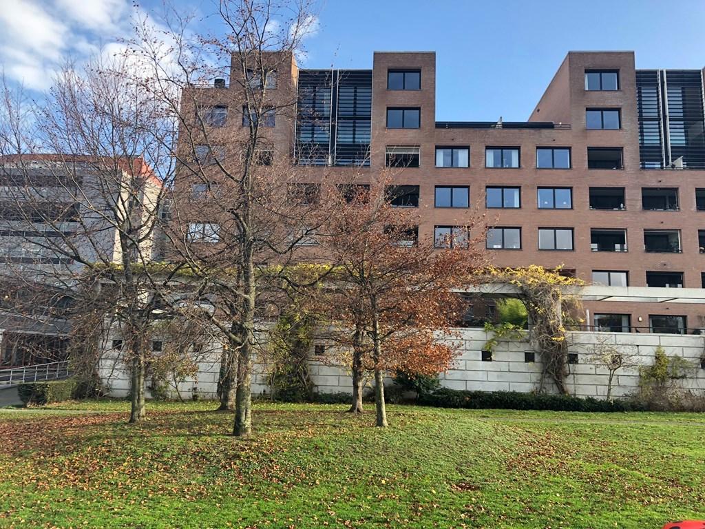 Bellefroidlunet, Maastricht