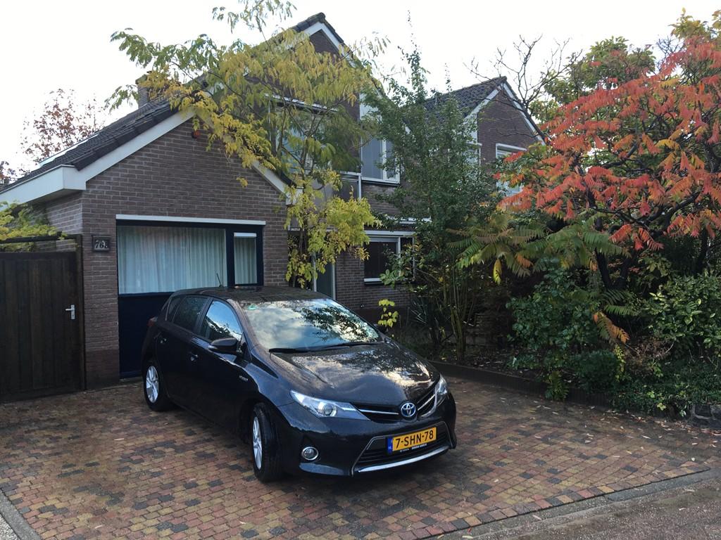 Klavergriend, Almere