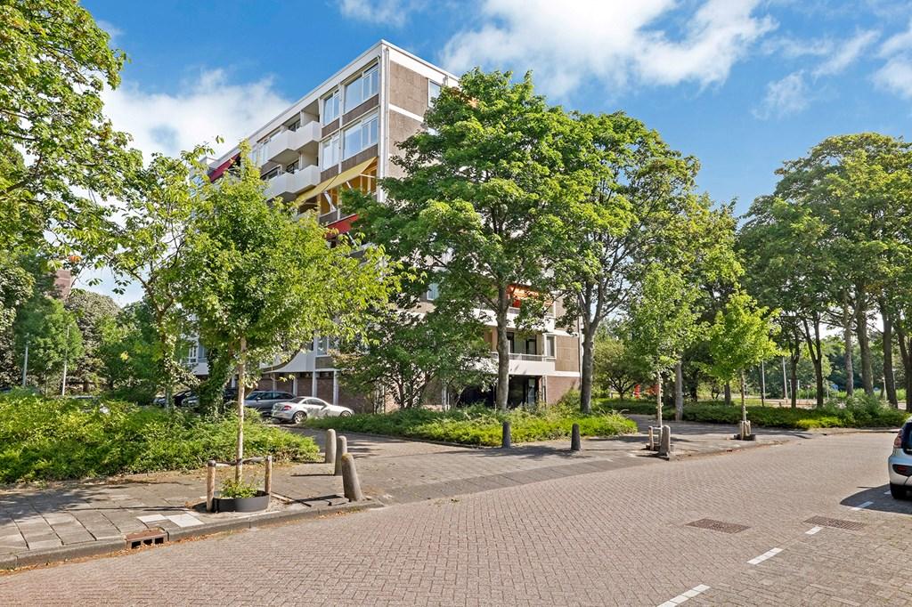 Van Boshuizenstraat