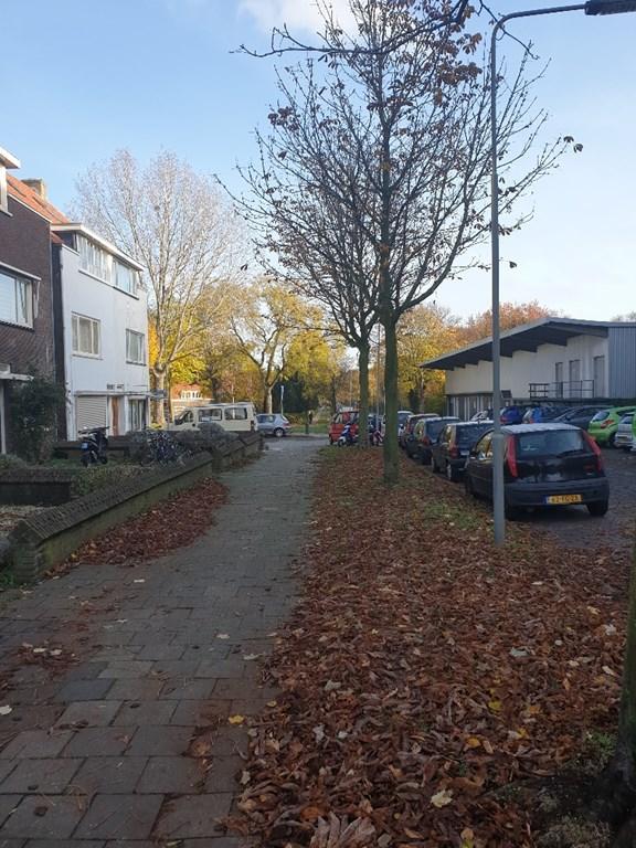 Broekstraat