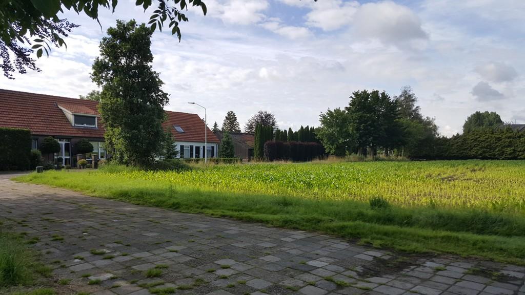 Mosselaarweg, Best