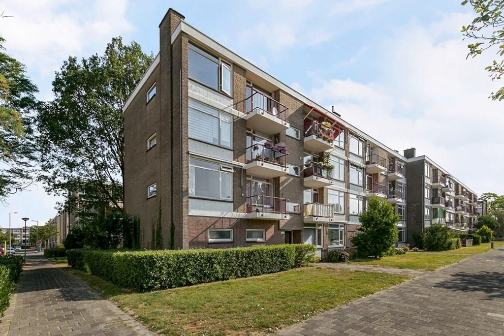Ellemare, Rotterdam