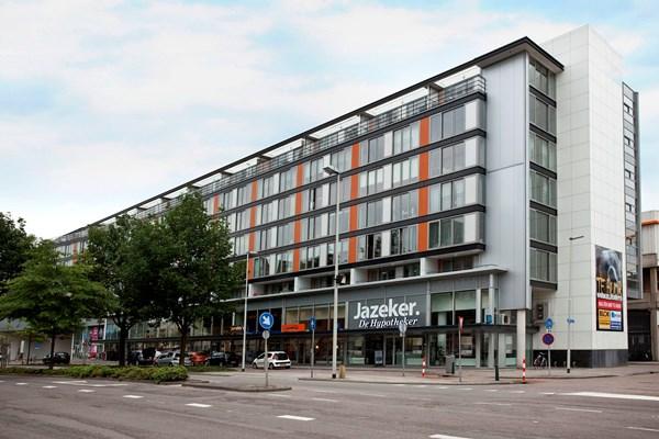Rotterdam Grote Beer  101  3155542