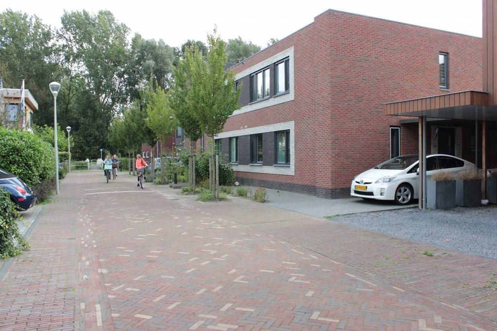 Gele Lis, The Hague