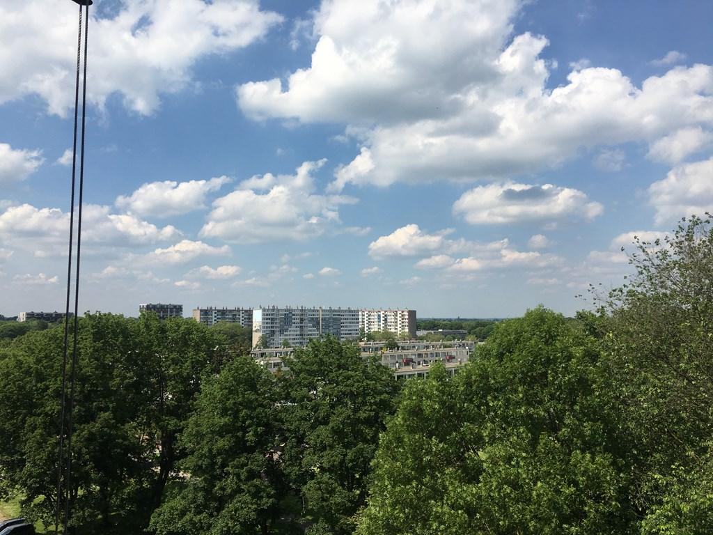 Korfoedreef, Utrecht