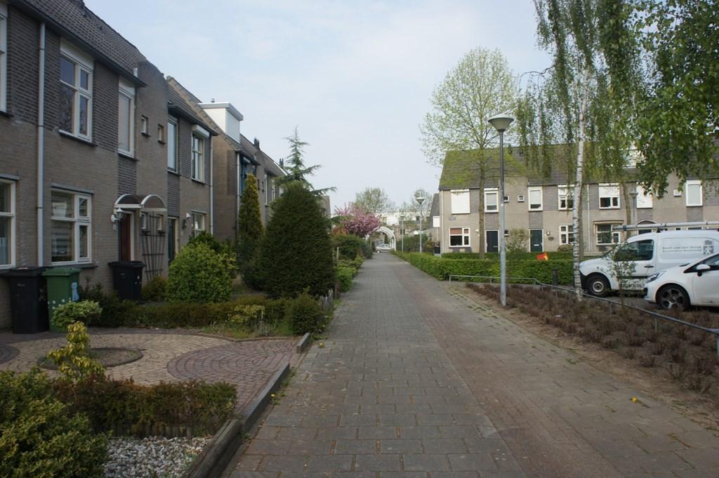 Jonkhof, 's-Hertogenbosch