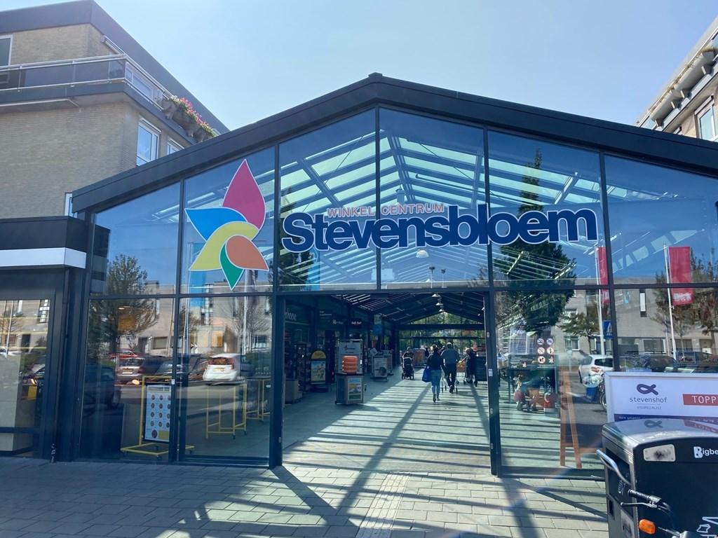Stevensbloem, Leiden