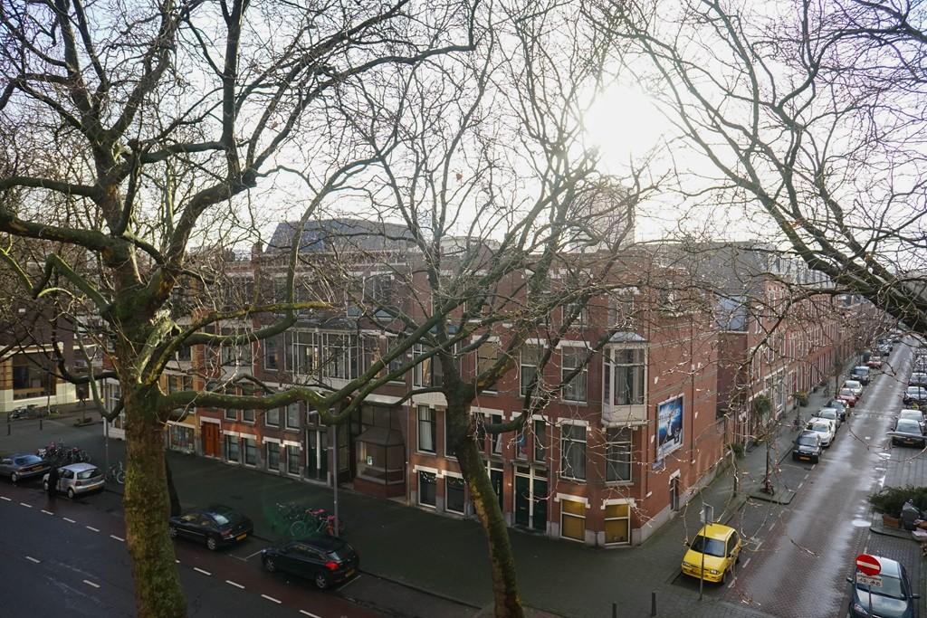 Rodenrijselaan, Rotterdam