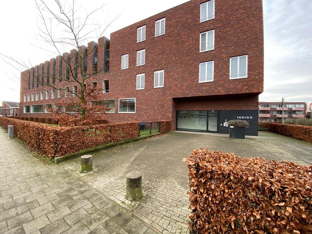 Paulus Potterstraat, Eindhoven