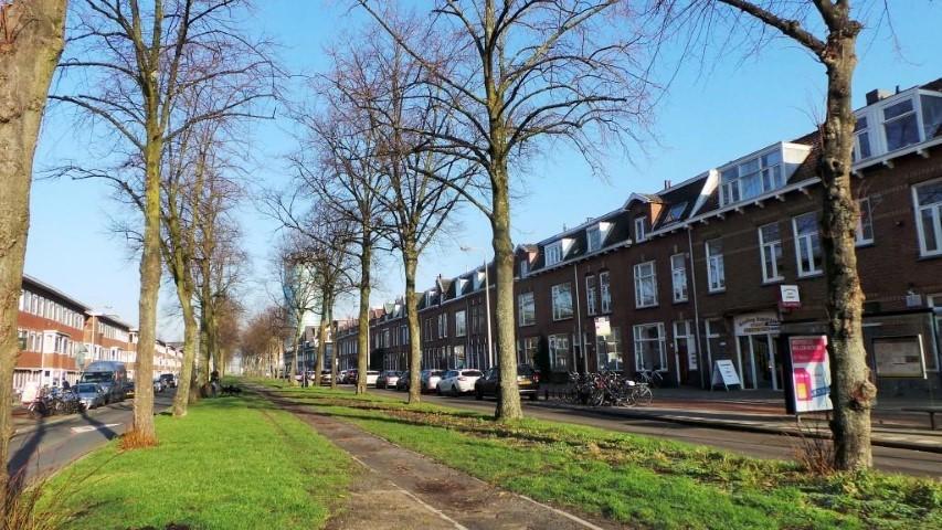 Croeselaan, Utrecht