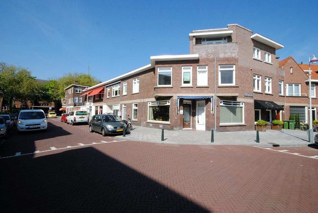 Van Nijenrodestraat