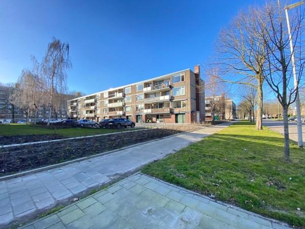 Rotterdam Drijfhoutstraat  1  4022803