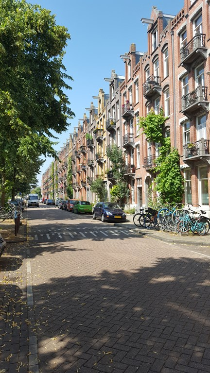 Domselaerstraat, Amsterdam