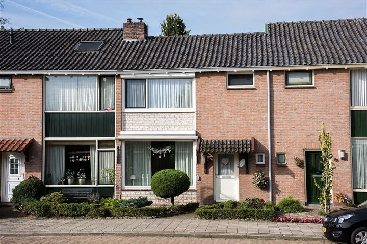 Steenbokstraat