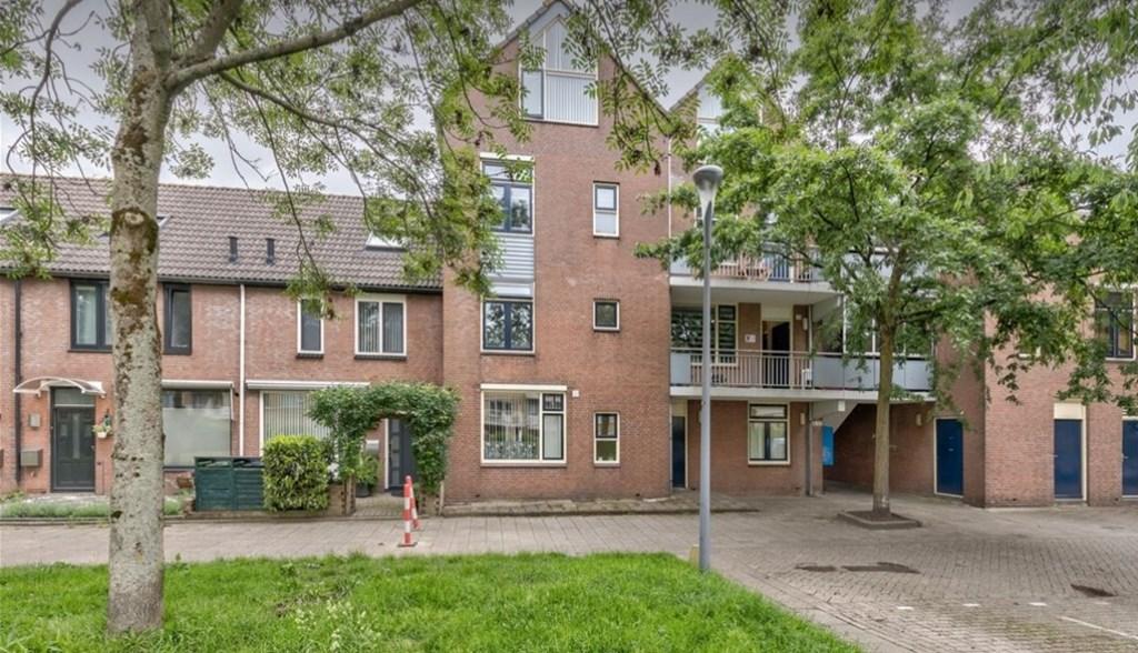 Helsingborgerf, Rotterdam