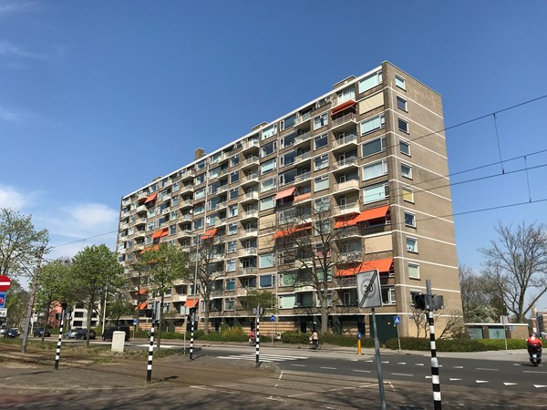 Rotterdam Molenvliet  100  3239626