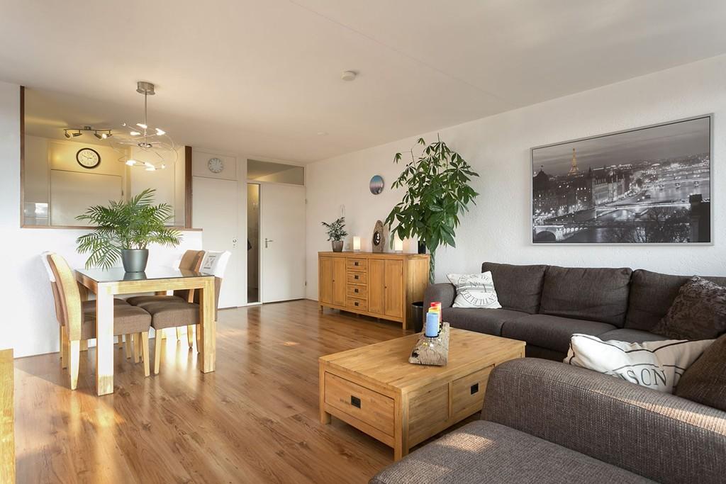 Domica - Het grootste aantal huurwoningen van Nederland