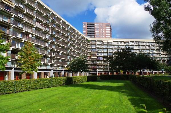 Rotterdam Niels Bohrplaats  492  3855498