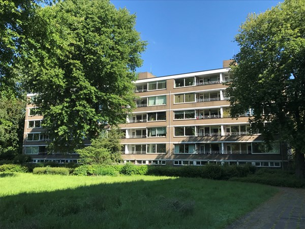 Rotterdam Van Bassenstraat  156  3304596
