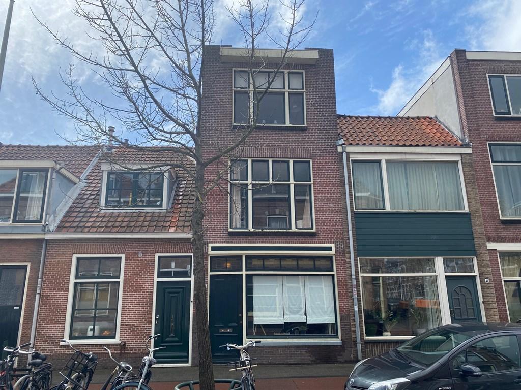 Lage Rijndijk, Leiden