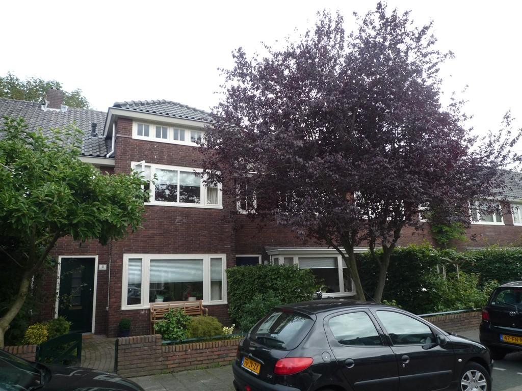 Symon Pelgromstraat, 's-Hertogenbosch