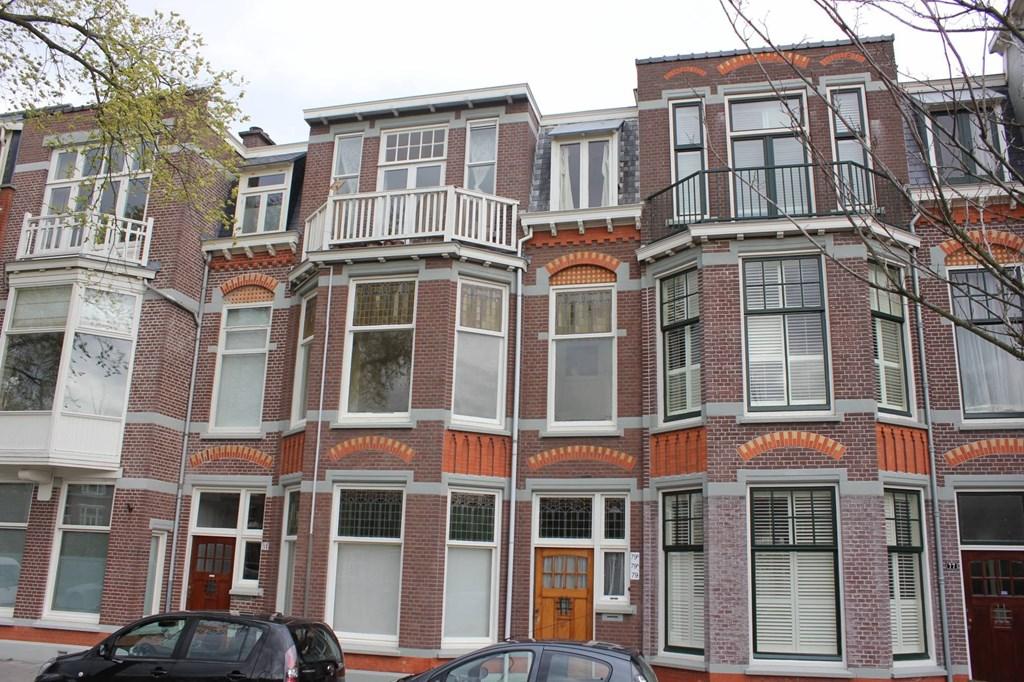 Van Boetzelaerlaan, The Hague