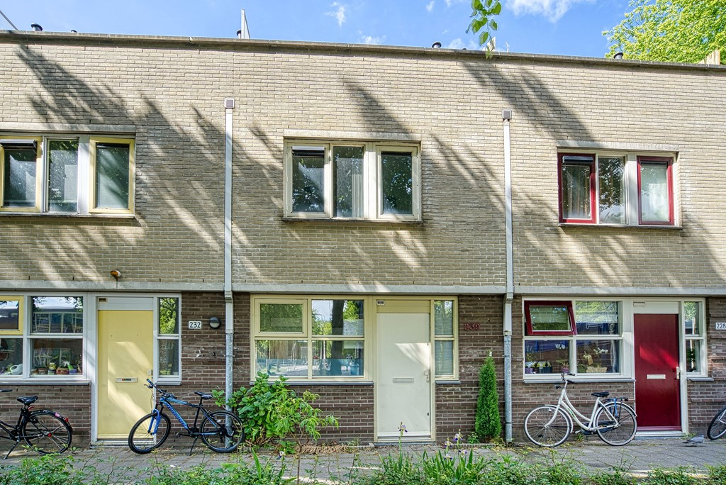 Troelstralaan, Delft