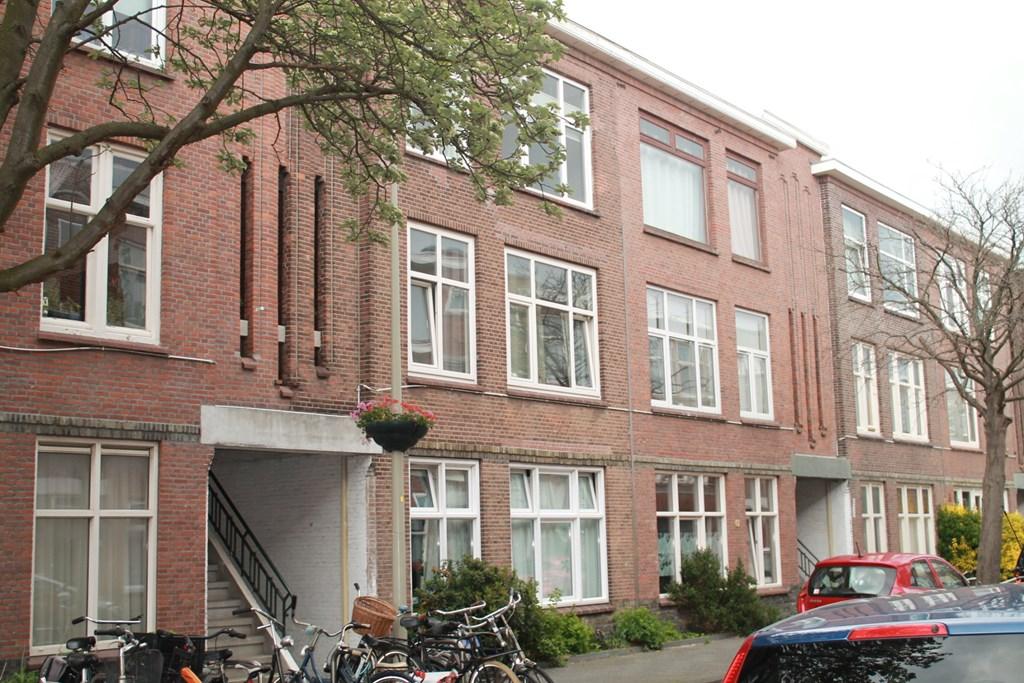 Rhododendronstraat, The Hague