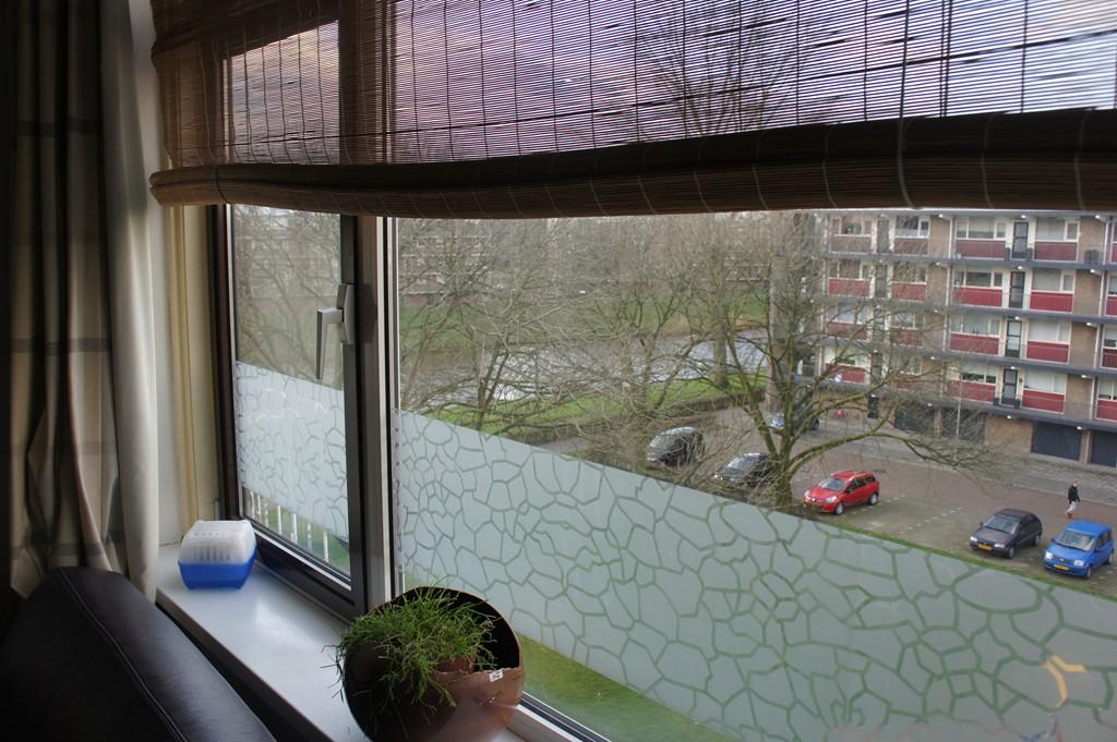 Van Beresteynstraat, 's-Hertogenbosch