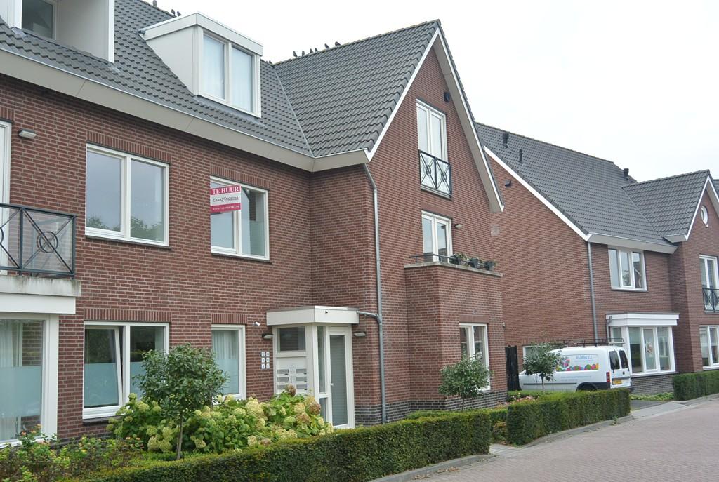 Anjerhof, Maarheeze